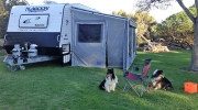 roll out awning for Walls with dog entrance